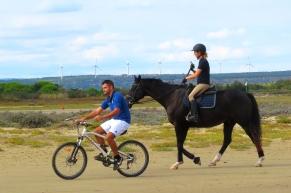 La Franqui équitation vélo