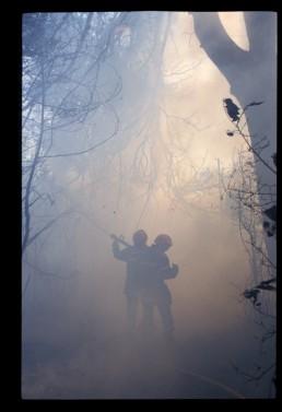 Ombre chinoise dans la fumée
